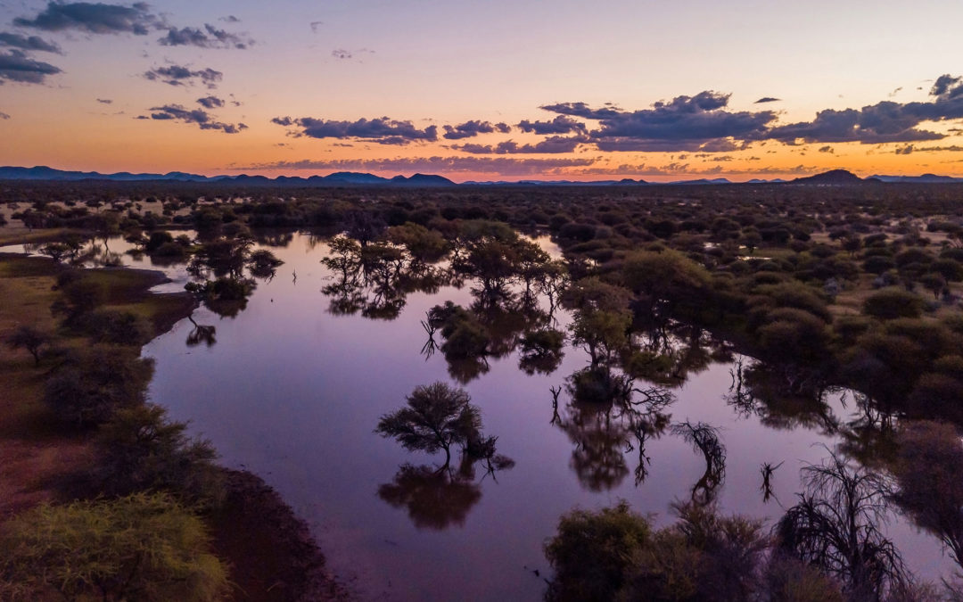 Blue hour drone photo over watering hole with stunning reflections in Ohorongo Game Reserve.