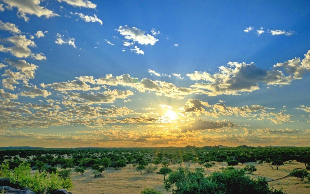 Namibia's Biodiversity