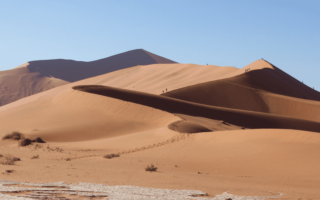Namibian Deserts